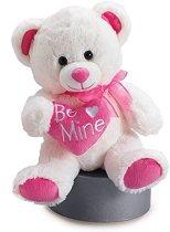 Valentijn witte beer (+/-25 cm)
