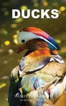 Ducks Weekly Planner 2017