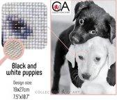 DIAMOND PAINTING CDA BLACK&WHITE PUPPIES 19X27CM