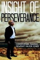 Insight of Perseverance