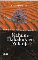 De Bijbel open - Nahum, Habakuk en Zefanja