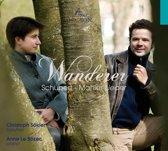 Schubert-Mahler: Lieder