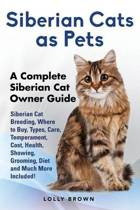Siberian Cats as Pets