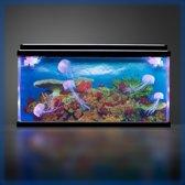Aquarium koraal rif met kwallen (snoezelen)