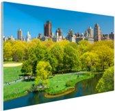 Groen Central Park in NY Glas 30x20 cm - klein - Foto print op Glas (Plexiglas wanddecoratie)