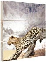 Luipaard op boomstam Hout 120x160 cm - Foto print op Hout (Wanddecoratie) XXL / Groot formaat!