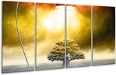 Glasschilderij Modern | Geel, Groen, Rood | 160x80cm 4Luik | Foto print op Glas |  F006169