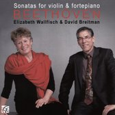 Beethoven Sonatas For Violin & Fort