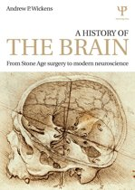A History of the Brain