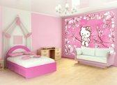 Fotobehang Sanrio, Hello Kitty | Roze | 208x146cm