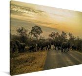 Olifanten die de weg kruisen in het Nationale Park van Kruger Zuid-Afrika Canvas 120x80 cm - Foto print op Canvas schilderij (Wanddecoratie woonkamer / slaapkamer)