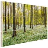 Foto van bos in de lente Hout 30x20 cm - klein - Foto print op Hout (Wanddecoratie)