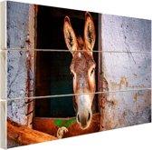 Ezel in de stal Hout 160x120 cm - Foto print op Hout (Wanddecoratie) XXL / Groot formaat!