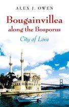 Bougainvillea along the Bosporus