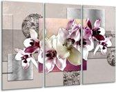 Glas schilderij Orchidee, Bloemen | Paars, Grijs | 120x80cm 3Luik | Foto print op Glas |  F007815