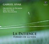 Orchestre De Picardie Arie Van Beek - La Patience