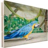Deze blauwkeelara komt uit de jungle Vurenhout met planken 80x60 cm - Foto print op Hout (Wanddecoratie)