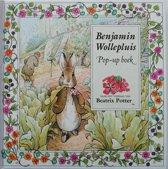 Benjamin Wollepluis pop-up boek