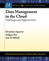 Data Management in the Cloud