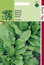 Hortitops Zaden - Spinazie Winterreuzen 15 gram