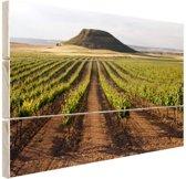 Landelijke wijngaard fotoafdruk Hout 60x40 cm - Foto print op Hout (Wanddecoratie)