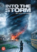 DVD cover van Into the Storm