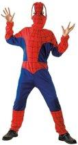 Spinnenheld kostuum voor kinderen 110-122