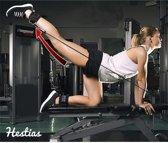 Fitness Enkelband - Sport Beenband - Ankle Cuff / Enkel Strap – Enkelband – D Ring – Fitness – straps – Zwart – 2 Stuks - Hestias®