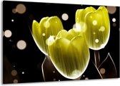 Canvas schilderij Tulp | Geel, Zwart | 140x90cm 1Luik