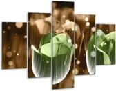 Glasschilderij Tulp | Groen, Bruin | 100x70cm 5Luik | Foto print op Glas |  F005152
