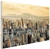 Sao Paulo Brazilie Hout 80x60 cm - Foto print op Hout (Wanddecoratie)