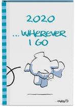 Vis Mini Agenda 2020
