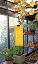 2 stuks Insectenkleefvellen H24x10cm set a 5 stuks Nature