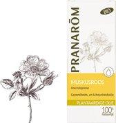 Plantaardige olië - Bio - Muskusroos Chili - 50 ml- Pranarôm