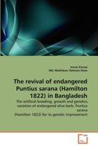 The Revival of Endangered Puntius Sarana (Hamilton 1822) in Bangladesh