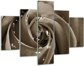 Glas schilderij Roos, Bloem | Sepia | 100x70cm 5Luik | Foto print op Glas |  F006564
