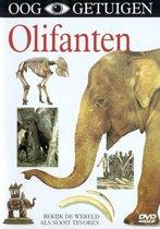 Ooggetuigen - Olifanten