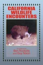 California Wildlife Encounters
