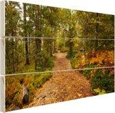 Een bospad vol met bladeren Hout 60x40 cm - Foto print op Hout (Wanddecoratie)