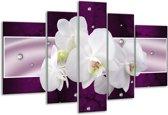 Glasschilderij Orchidee | Zwart, Wit, Paars | 170x100cm 5Luik | Foto print op Glas |  F005616