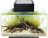 Edge I 2.0 aquarium Zwart