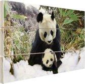 Moeder panda en welp in de winter Hout 80x60 cm - Foto print op Hout (Wanddecoratie)