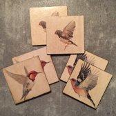 Onderzetters vogels. Set van 6. 10 x 10 cm.
