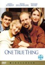 One True Thing (D) (dvd)