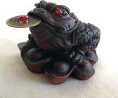 Feng  Shui Yuan bao kikker met munt rode 6.5x7x5cm