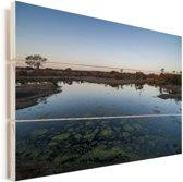 Waterpool bij het Kruger-park in Zuid-Afrika Vurenhout met planken 90x60 cm - Foto print op Hout (Wanddecoratie)