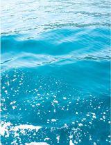 Zeewater Poster - 30x40cm – WALLLL