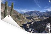 Uitzicht vanaf de cactus op de Colca Canyon vallei in Peru Tuinposter 180x120 cm - Tuindoek / Buitencanvas / Schilderijen voor buiten (tuin decoratie) XXL / Groot formaat!