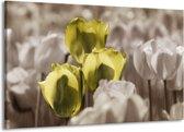 Canvas schilderij Tulpen | Bruin, Groen, Zwart | 140x90cm 1Luik