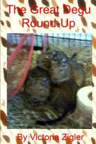 The Great Degu Round-Up